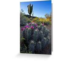 Desert Spring Greeting Card