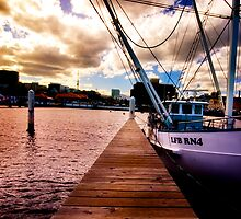 The Plank: Constitution Dock, Hobart, Tasmania by pmcphotography