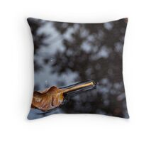 Reflections on then and now - a haiku Throw Pillow