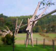 Clothespin by Donav