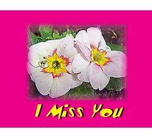 Primrose I Miss You Photographic Print
