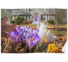 Welcome mat of Spring crocuses Poster