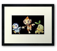 Baby Sinnoh Starters Framed Print