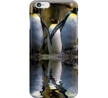 King Penguin, Antarctic, Montreal Biodome iPhone Case/Skin