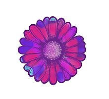 Colorful Daisy Photographic Print