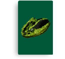Snake Eyes (Green) Canvas Print
