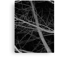 ...11 Canvas Print
