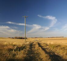 Rural Landscape by ionclad