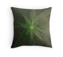 Plant close up overhead. Throw Pillow