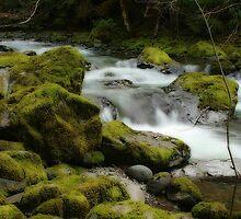 Brice Creek by Chappy