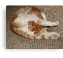 Weird Sleeping Position Canvas Print