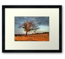 First Light #2 Framed Print