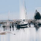 Port Albert too by retepk