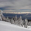 Shiga Snow Fields by Robert Mullner