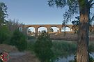 Malmsbury Rail Bridge by mspfoto