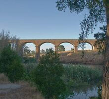 Malmsbury Rail Bridge by mspfoto
