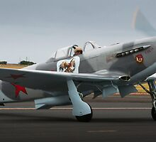 Yak-9 by Stephen McMillan