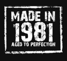 Made In 1981 Aged To Perfection - Funny Tshirts by custom333