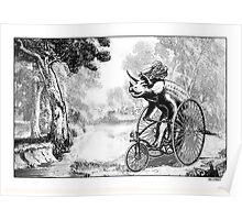 Triceratops on a Tricycle Poster