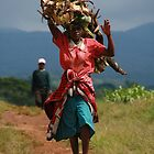 Collecting Firewood by CCManders