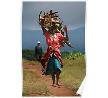 Collecting Firewood Poster