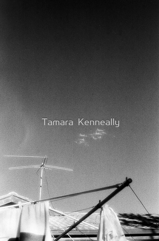 Suburbia by Tamara  Kenneally
