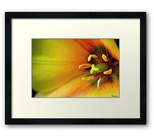 With These Hands I give You My Heart............... Framed Print