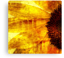 Golden Oil Sunflower  Canvas Print