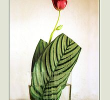 Ikebana-006 Greeting Card by Baiko