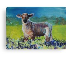 Lamb standing in long grass Canvas Print