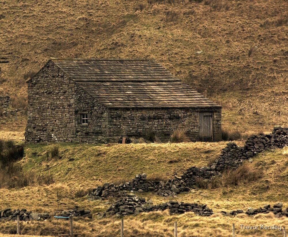 Barn  by Trevor Kersley