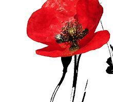 poppy by dinghysailor1