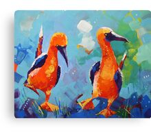 Two Funny Birds Canvas Print