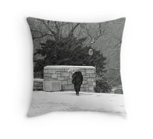 Caught In The Elements Throw Pillow