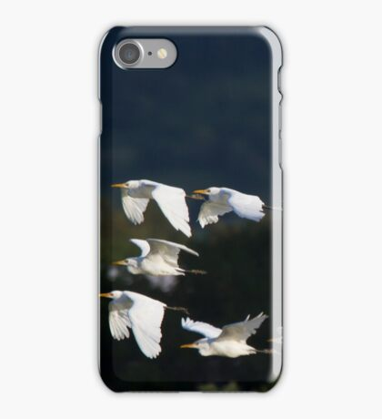 Sunset Roosting  iPhone Case/Skin