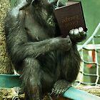 The Great Ape Escape by Matt West