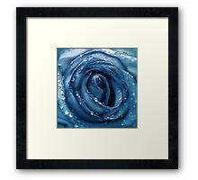 Baby Blue Framed Print