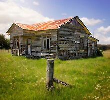 I'm Still Standing - NZ  by CarlaMarie  Photography