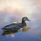 The Friendly Duck by Mark Ashton