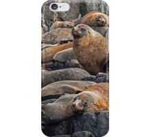 Sealy Posturepedic iPhone Case/Skin