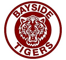 Bayside Tigers Photographic Print