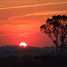 Late Summer Sunset by SharonD