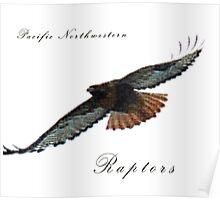 Pacific Northwestern Raptors Poster