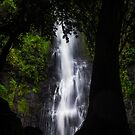Vaimahutu Falls, Tahiti by Kana Photography