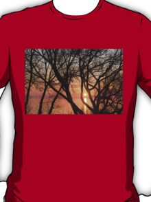 Sunrise Through the Chaos of Tree Branches T-Shirt