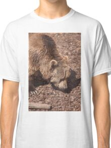 bear in the zoo Classic T-Shirt