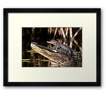 Don't come any closer! Framed Print
