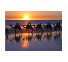 Cable Beach Camels At Sunset Art Print