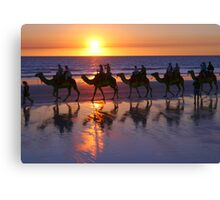 Cable Beach Camels At Sunset Canvas Print