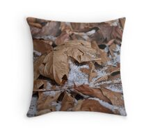 Light snow, frost and dried leaves Throw Pillow